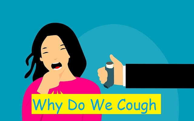 Why Do We Cough?
