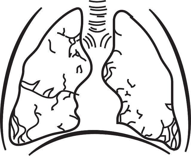 What Does A Pulmonary Embolism Feel Like