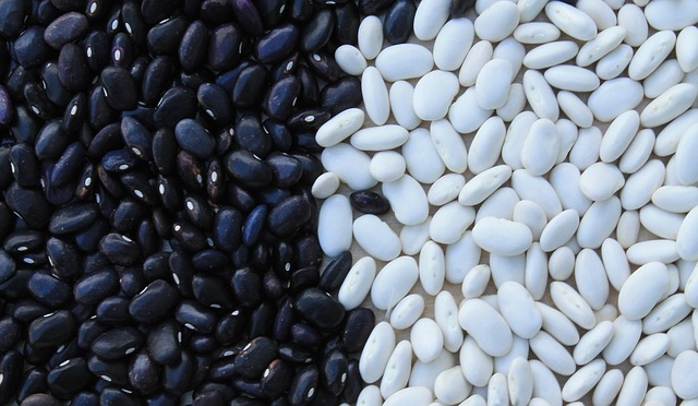 Sources Of Cholesterol - Seed and leguminous plants