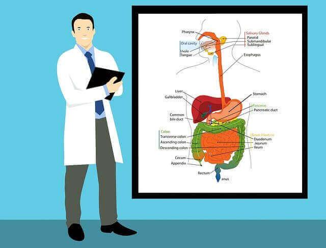 Gastroenterologist Definition